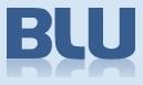 Blu Asset Management